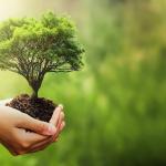 Código de compromiso ambiental de la LEDU
