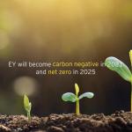 EY tendrá una huella negativa de carbono en 2021 y será emisor neto cero en 2025
