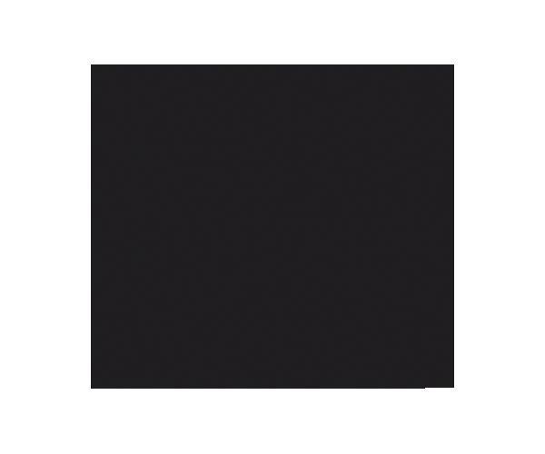 Ericsson mentor de la LEDU